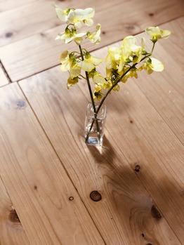 GALLERIA SeRes 【ガレリア セレス】のブログ「春の花とかとか、、、」