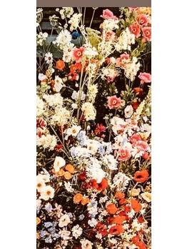 GALLERIA SeRes 【ガレリア セレス】のブログ「5月」